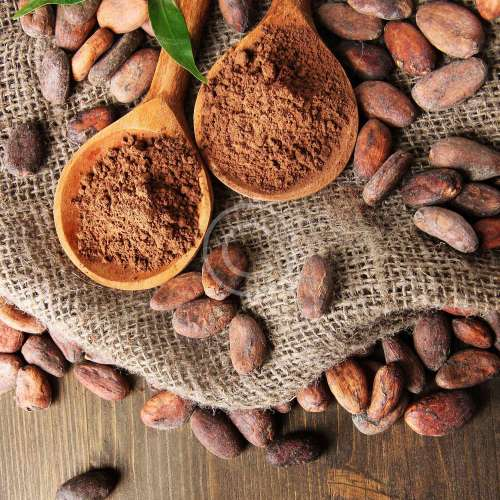 Roasting Cacao Beans